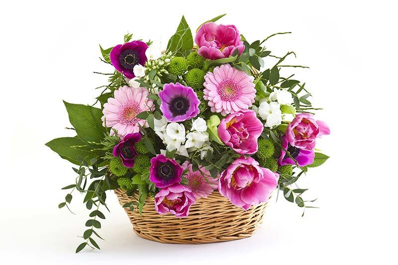 fleurs naturelles à Roquebrune-sur-Argens | AU PANIER FLEURI